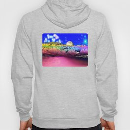 Night in Space (view from an alien planet) Hoody