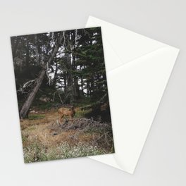 Lobos Deer Stationery Cards