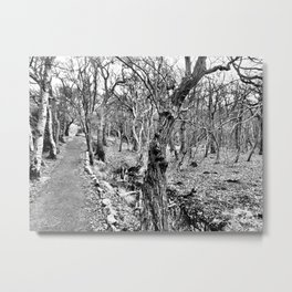 Black and white path Metal Print