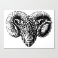 bioworkz Canvas Prints featuring Ram Head by BIOWORKZ