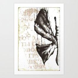 Half Butterfly Art Print