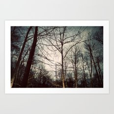 The Moon at Night Art Print