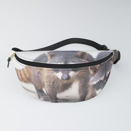 Cute wild Racoons in Costa Rica Fanny Pack