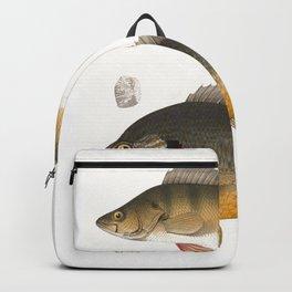 Fish illustration Backpack