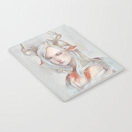 Aria Notebook