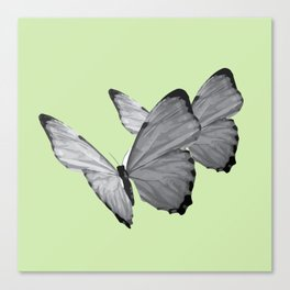 BUTTERFLY SERIES (2) Canvas Print
