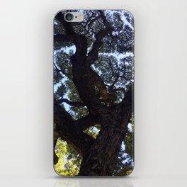 Hawaiian Tree iPhone Skin