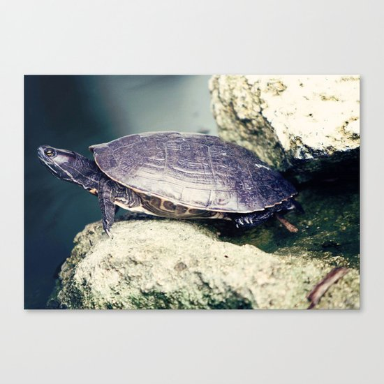 slow Canvas Print