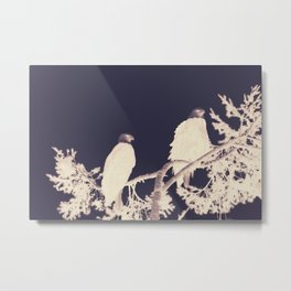 Night Eagles Metal Print