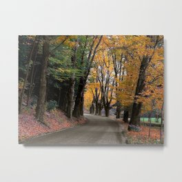 Bend in the Buffalo Road Metal Print
