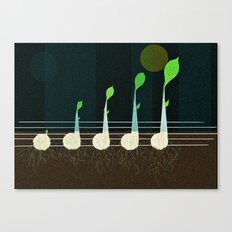 music seeds Canvas Print