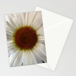Margerite Part I. Stationery Cards