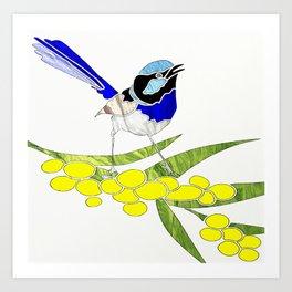 Blue Wren and Golden Wattle Art Print