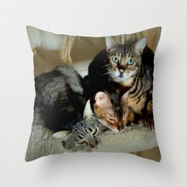 Three Close For Comfort Throw Pillow