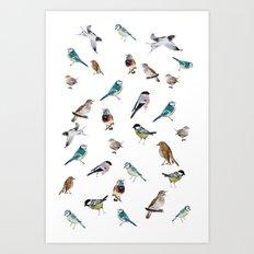 I love birds Art Print