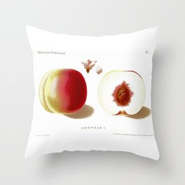 Deutsche Pomologie Throw Pillow