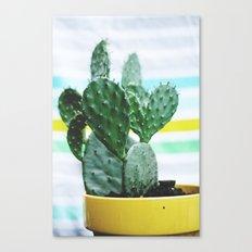 Summer Succulent Canvas Print
