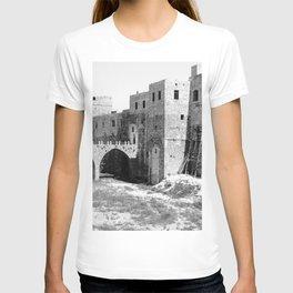 Akka (Acre, Accho) T-shirt