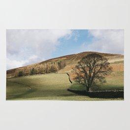 Sunlit tree and hillside. Edale, Derbyshire, UK. Rug