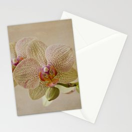 Yellow Spotted Orchid Stationery Cards
