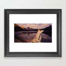 Alberta Driftwood Framed Art Print