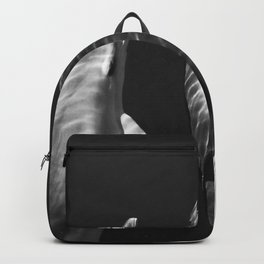 Beautiful wild dolphins black and white Backpack
