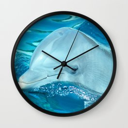 Hello Dolphin Wall Clock