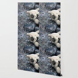 Desert Skull Two Wallpaper