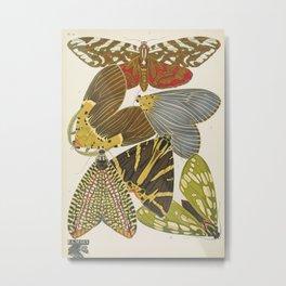 Moth Print by E.A. Seguy, 1925 #5 Metal Print