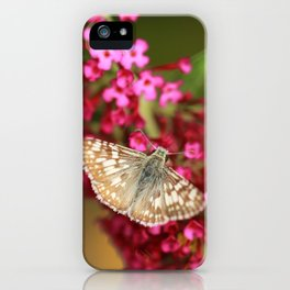 Common Checkered Skipper iPhone Case