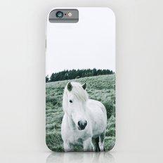 Icelandic Horses iPhone 6s Slim Case