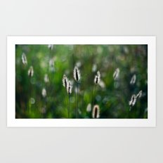 green summer Art Print