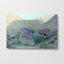 the ancient desert tortoise Metal Print
