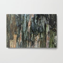 Old Eucalyptus Tree Bark Texture Metal Print