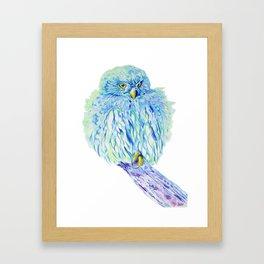 Sea Owl Framed Art Print