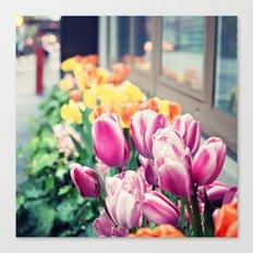 Sidewalk Tulips Canvas Print