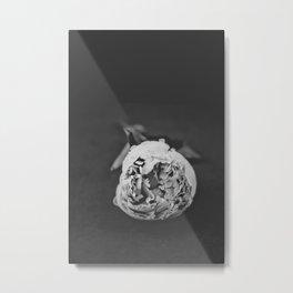 Black and White Peony Stem Metal Print