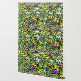 More Pansies Wallpaper