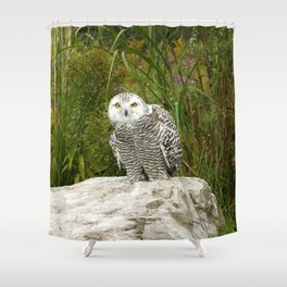 Curious Snowy Owl Shower Curtain