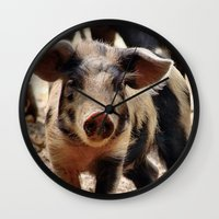 piglet Wall Clocks featuring Young Piglet by MehrFarbeimLeben