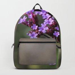 Macro of a purple flower Backpack