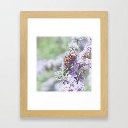 . butterfly . Framed Art Print