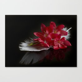 Treasures Canvas Print