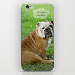 Fabulous iPhone Skin