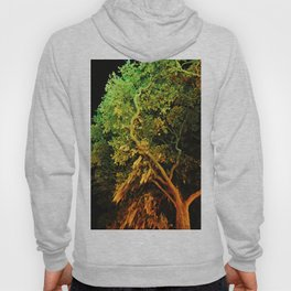 The Secret Haven of Tisiphone Hoody