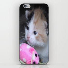 Calico 2 iPhone Skin