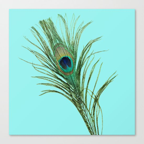 Peacock Feather on Blue Background Canvas Print