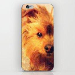 Wise Yorkie Yoda | Dogs | Yorkies iPhone Skin