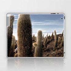 Cactus in Incahuasi Laptop & iPad Skin