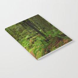 The Deep Woodland  Path... Notebook